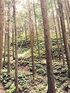山7.jpg