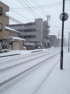 雪道__ 2.jpg