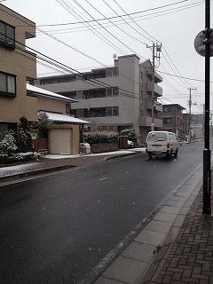 雪道__ 3.jpg